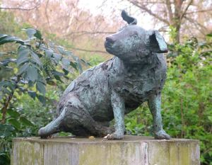 brown-dog-1980s
